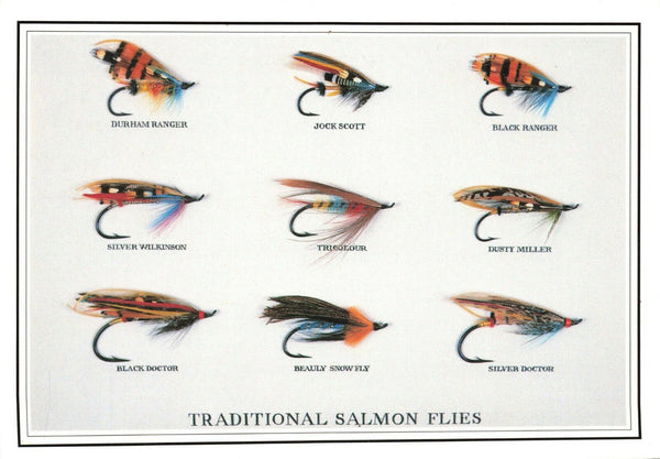 Fly Fishing Postcard, Traditional Salmon Flies by Country Cards KX3