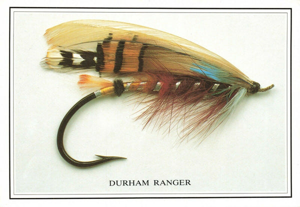 Fly Fishing Postcard, Durham Ranger Salmon Fly by Sporting Cards KX8