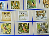 PHQ Stamp Postcards Set of 10 No.302 Endangered Species: Birds 2007 MO2