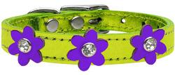 Metallic Flower Leather Collar Metallic Lime Green With Metallic Purple flowers Size 26