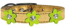 Metallic Flower Leather Collar Gold With Metallic Lime Green flowers Size 26
