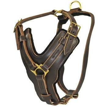 Image of The Victory - Leather Dog Harness