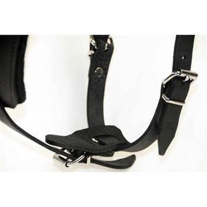 The Victory - Leather Dog Harness