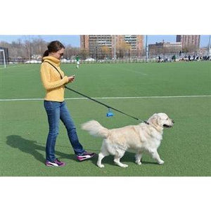 SIMPLE PLEASURE - HANDS FREE LEATHER DOG LEASH