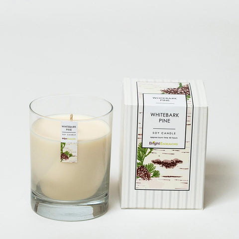 white pine bark soy candle bright endeavors
