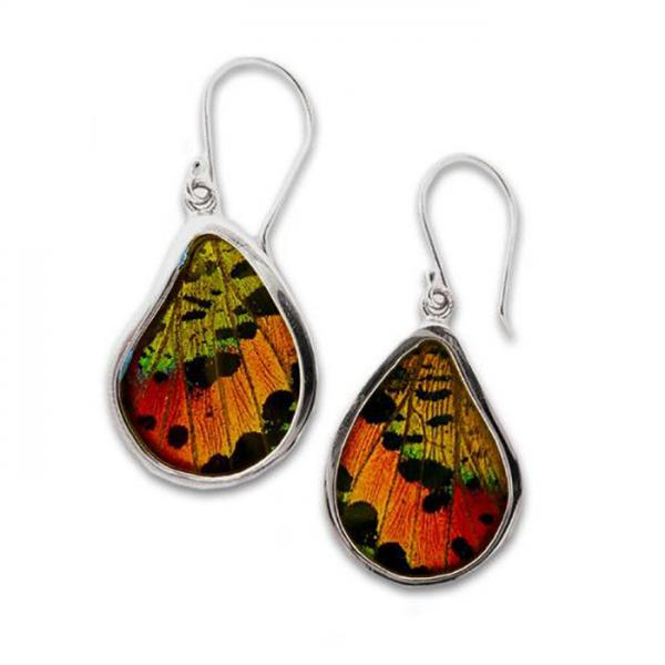 Real Butterfly Wing Sterling Silver Teardrop Earrings 112 Chrysiridia Rhipheus/Sunset Moth