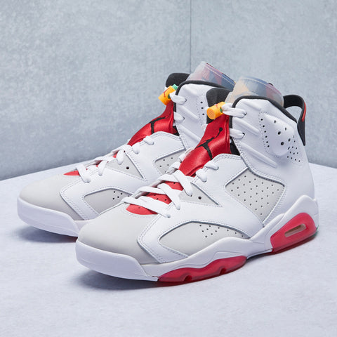 Air Jordan 6 Retro Hare Shoe