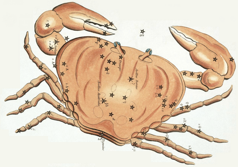 Cancer-Crab-Zodiac