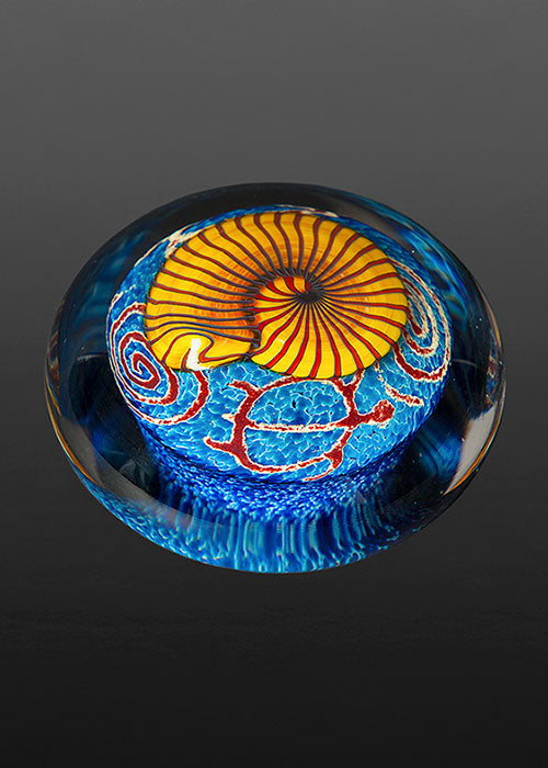 Gold Nautilus on Sapphire Paperweight