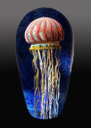 Purple Ribbed Jellyfish Seascape