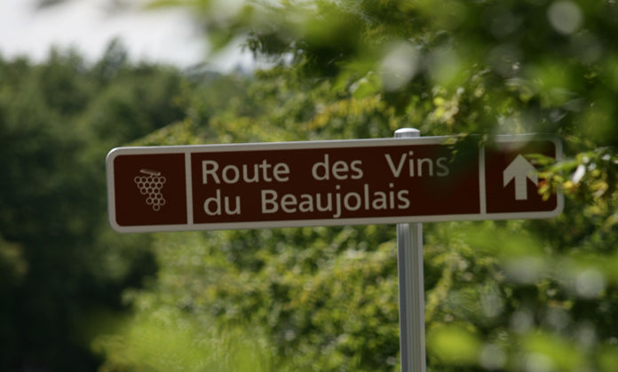 The true story about French wines and Beaujolais Nouveau