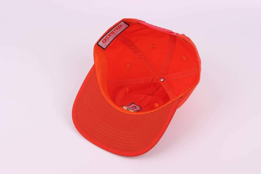 Snapback D-Tan - DILESTED