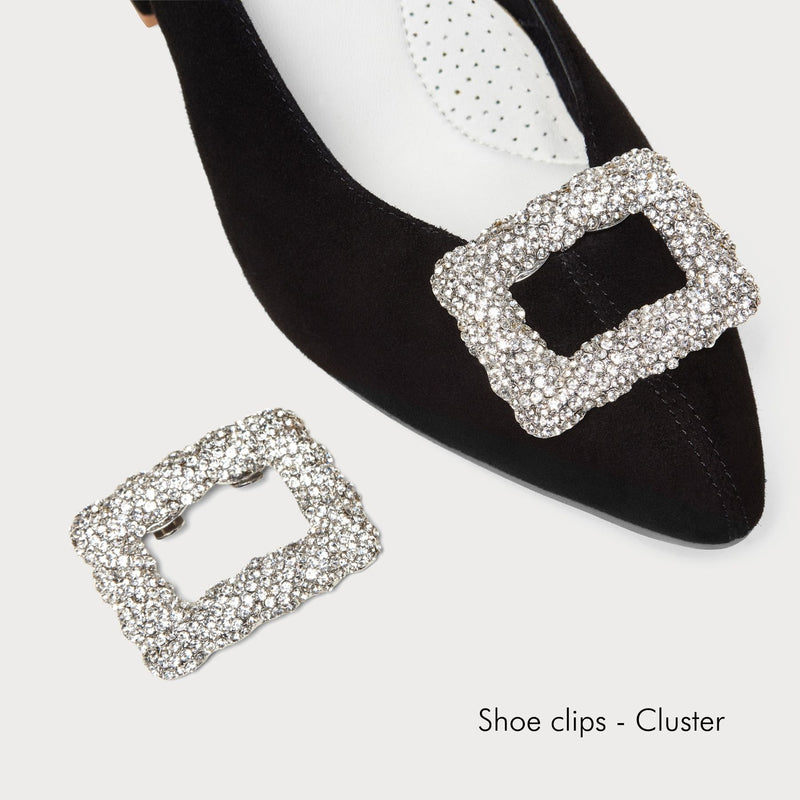 cluster shoe clips