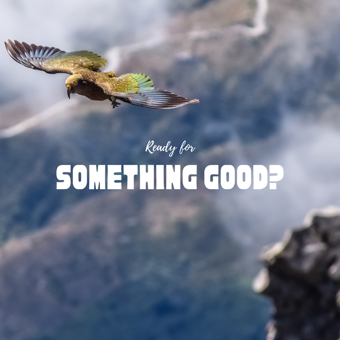 Ready for something good?
