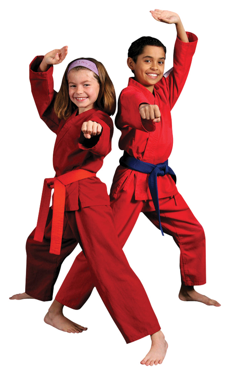 Karate Hamilton, Martial Arts Hamilton, Karate Ancaster, First Choice Martial Arts, Martial Arts Ancaster, Karate Stoney Creek, Martial Arts Stoney Creek, Karate Caledonia, Martial Arts Caledonia, Fitness, Kids Fitness, Kids Birthday Parties,