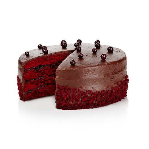 Puratos Tegral Chocolate Sponge 12.5kg - The Artisan's Choice