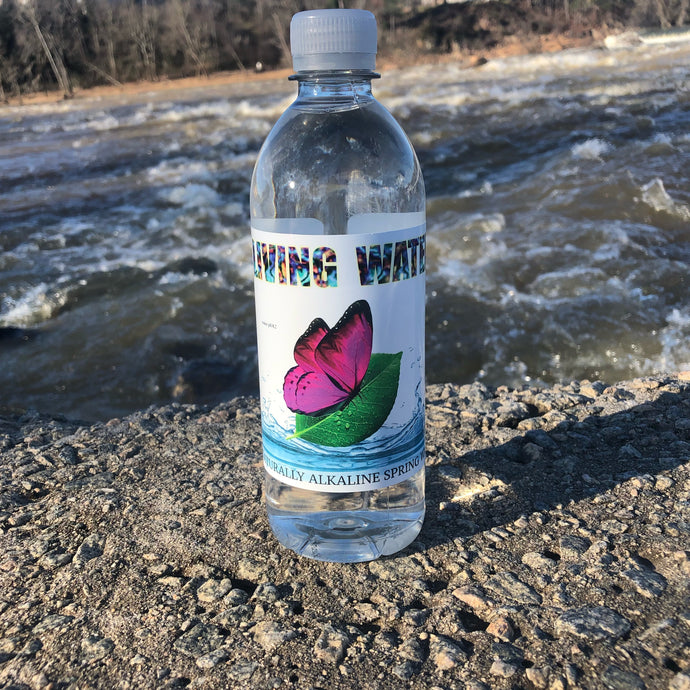 Living Water (Alkaline Spring Water)