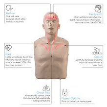 Load image into Gallery viewer, house-of-first-aid,Brayden Pulse CPR Manikin plus 10% GST,House of First Aid,Manikins