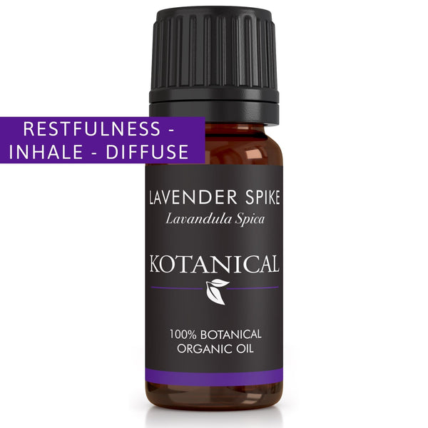 Lavender Spike Essential Oil kotanical
