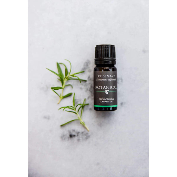 Rosemary Essential Oil kotanical
