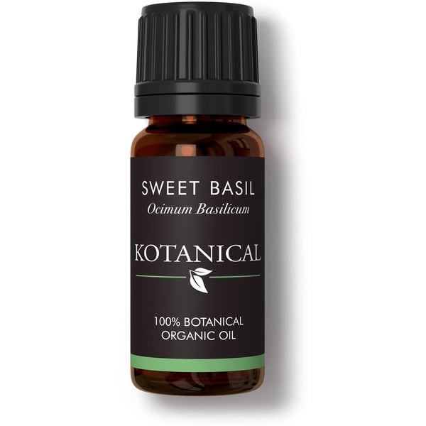 Sweet Basil Essential Oil kotanical