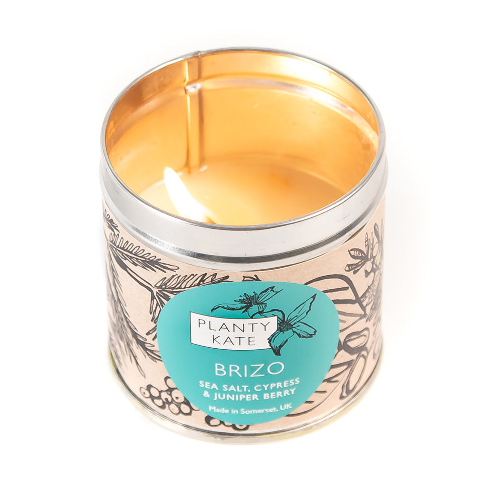 Brizo Candle by Planty Kate