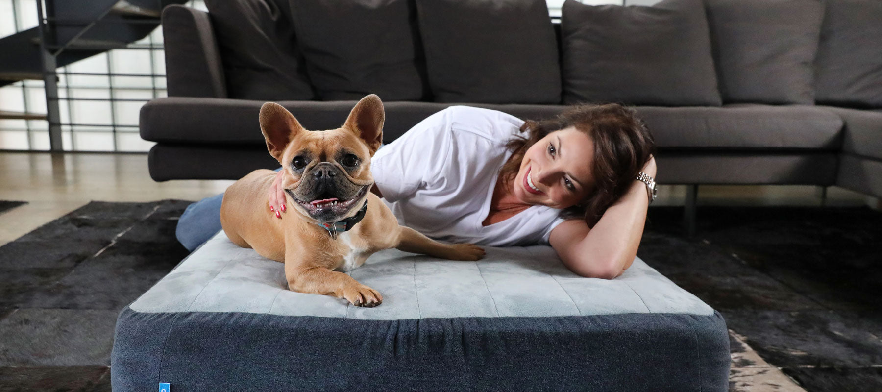 Where Should Your Pets Sleep?