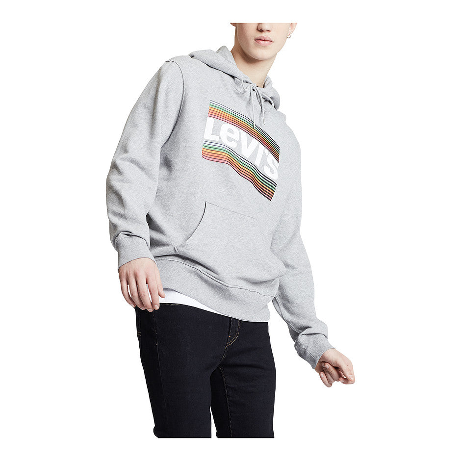 Graphic Hoodie for Men in Midtone Heather Grey