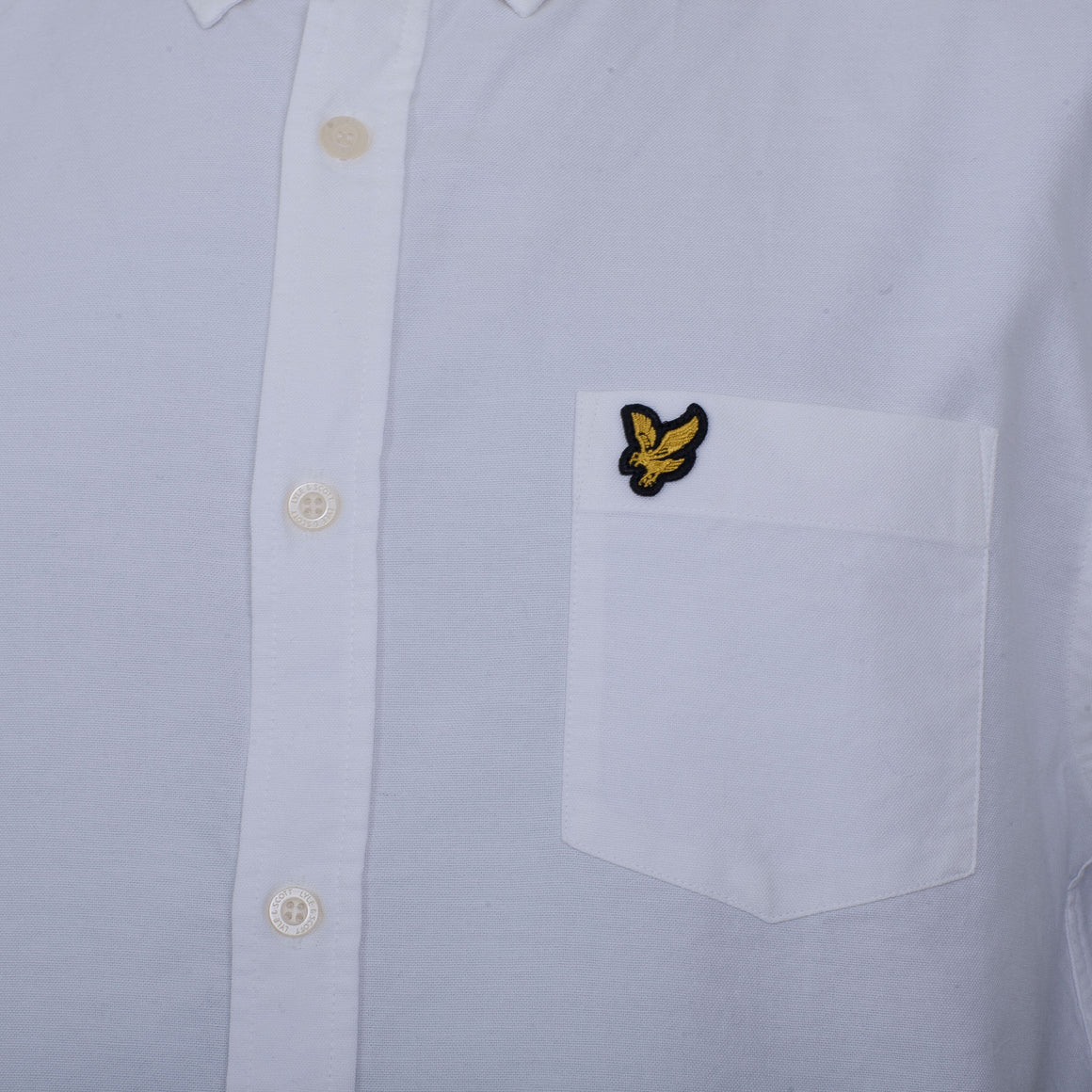 Short Sleeved Oxford Shirt for Men in White