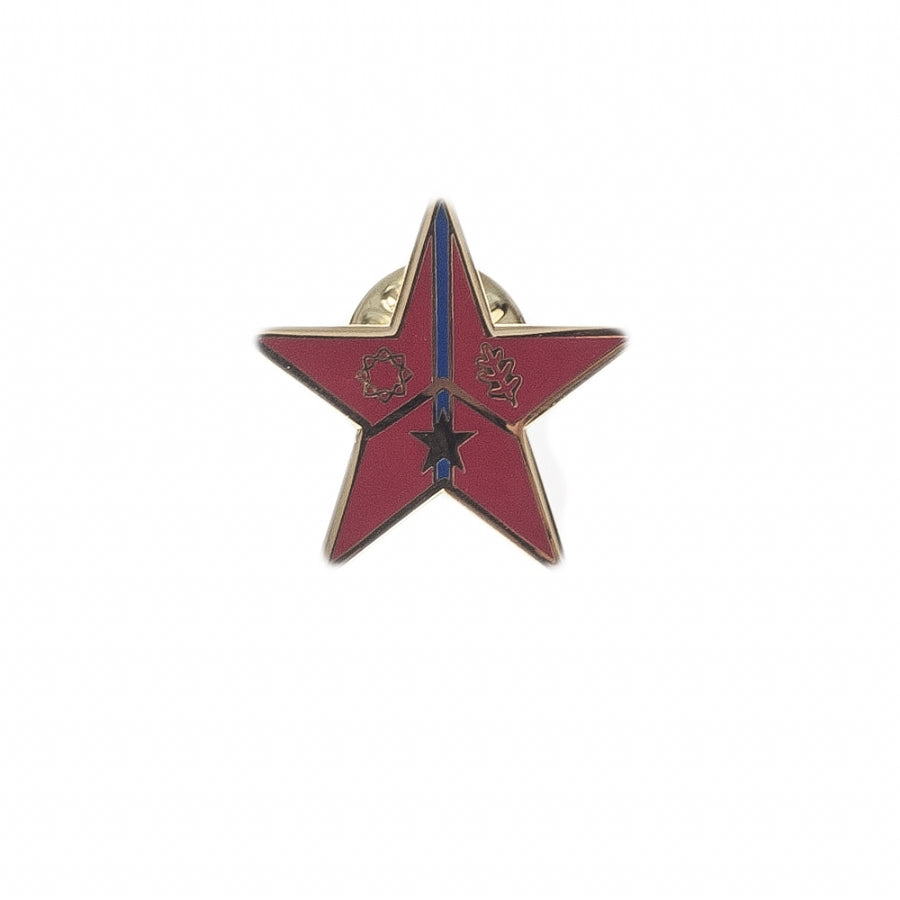 St Josephs College Sixth Form Girls Lapel Pin
