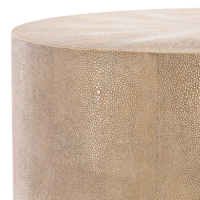 Javon Faux Shagreen End Table Natural