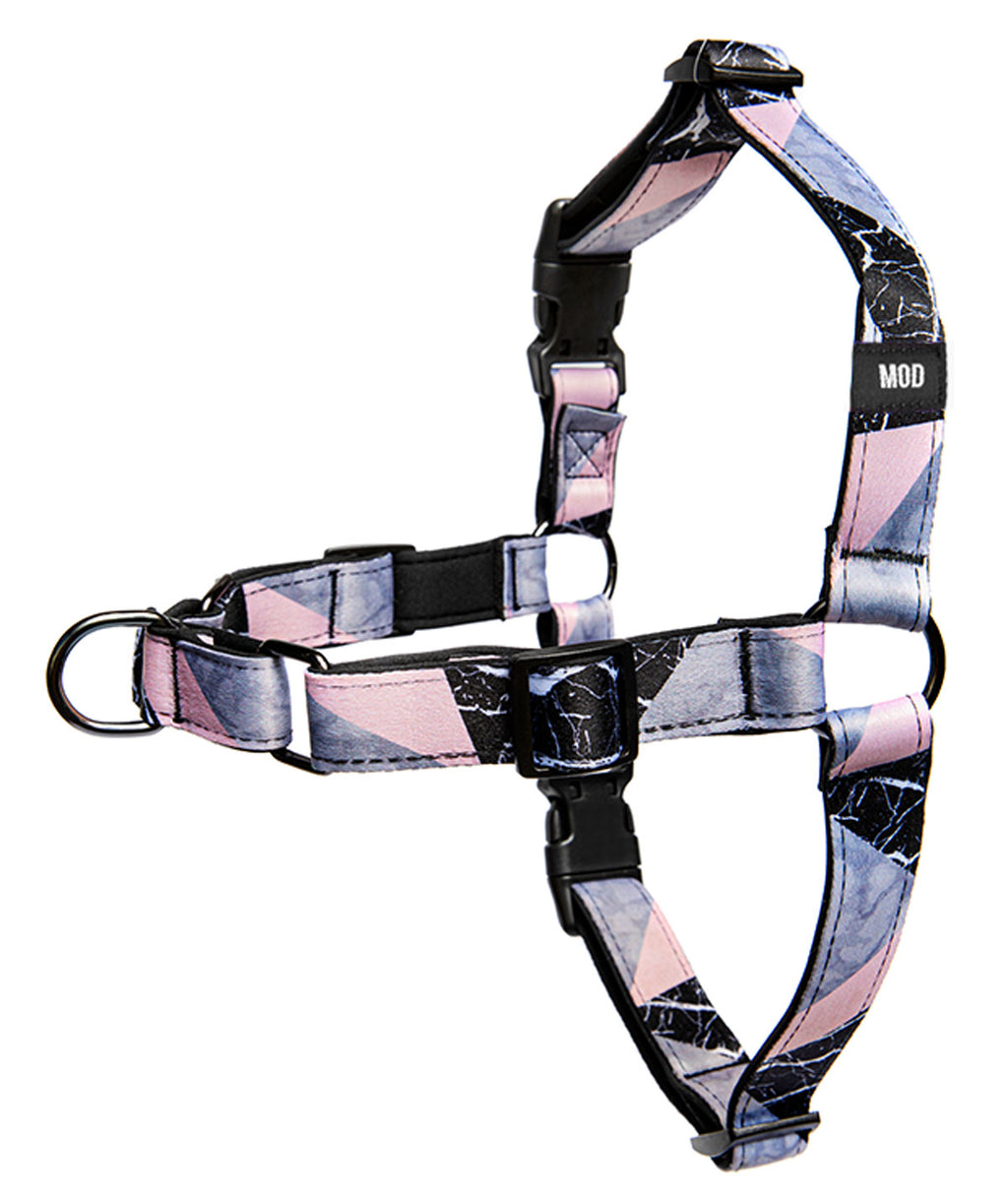 Blanco Pinco No-Pull Harness - MODLEASH