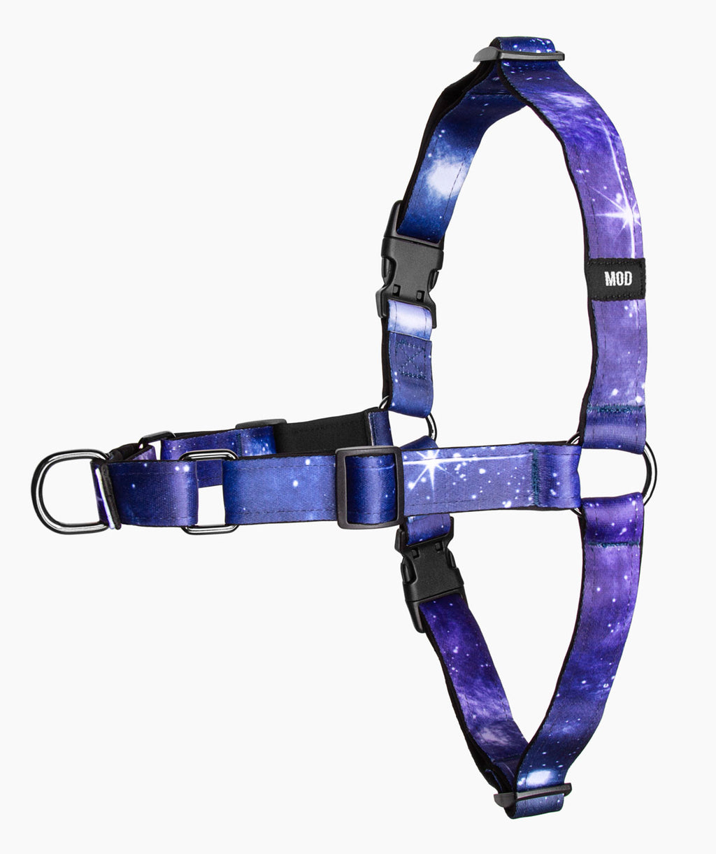 Galaxy Quest No-Pull Harness - MODLEASH