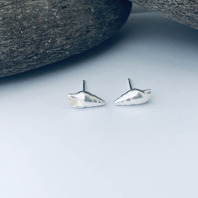 Dunwich Shell Stud Earrings