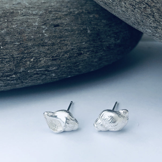 Orford Shell Stud Earrings