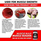 Muscle Bully | Muscle Builder
