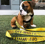OFF-WHITE LEASH (YELLOW)