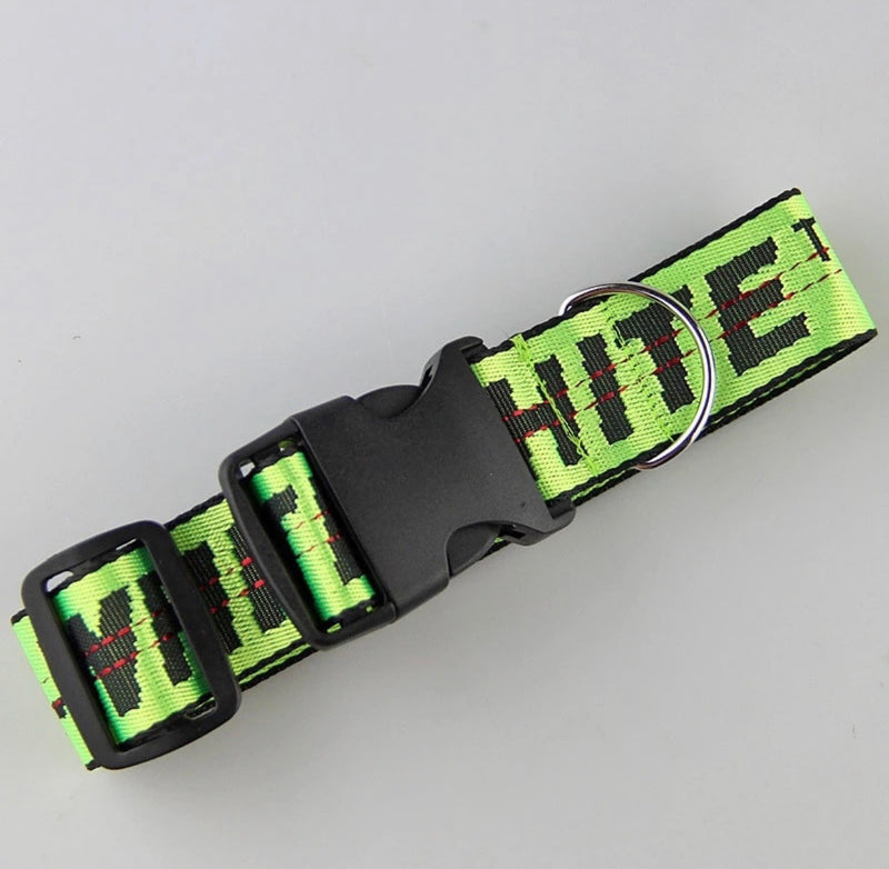 OFF-WHITE DOG COLLAR (MONEY GREEN)