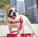 SUP DOG HARNESS * (RED)