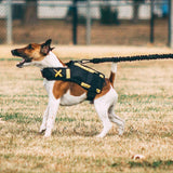XDOG Resistance Band for Dogs (6') - Strengthen Core Muscle, Promote Muscle Growth