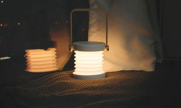 Cactus - Portable Collapsible Lantern - Flowydecor