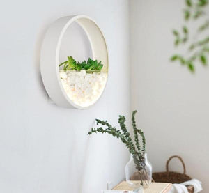 Maximus - Round Metal Wall Mounted Planter Lamp - Flowydecor