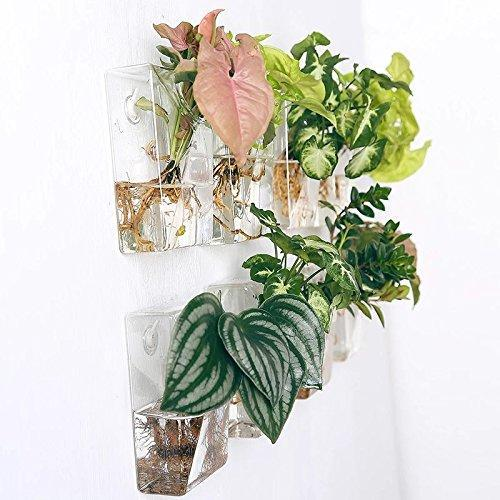 Set of 4 Wall Mountable Planters - Flowydecor