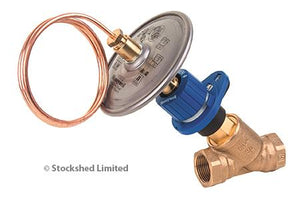 Differential pressure valve (body+disc) - Stockshed Limited | Heat Interface Unit (HIU) Division