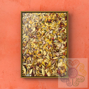 jaan-imports - Leaves Change Photography Digital Downloads JPG - Khoobsurat Gift Shop - Digital Download