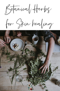 Herbs to Heal your Skin