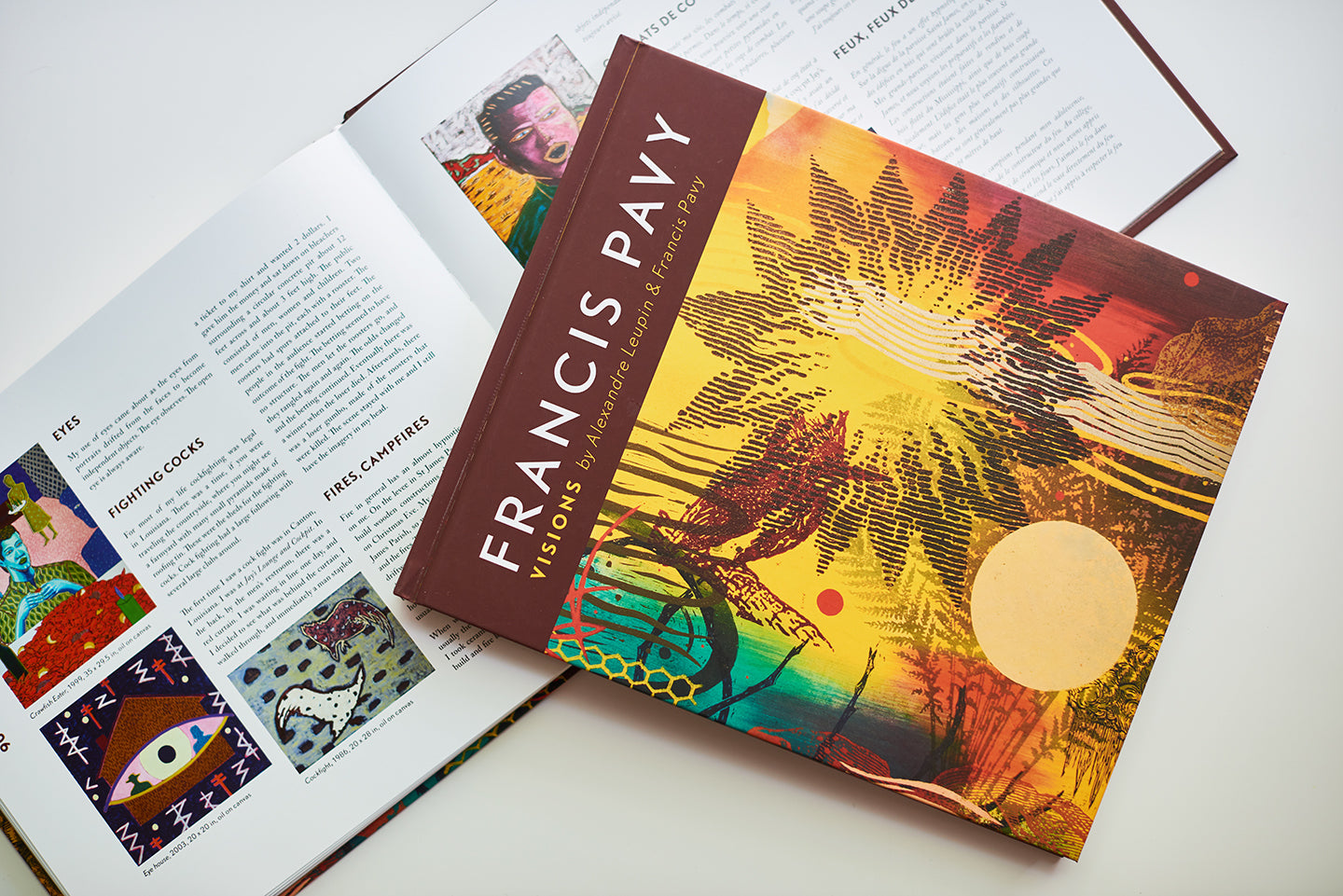 Francis Pavy Visions Book by Alexandre Leupin and Francis Pavy