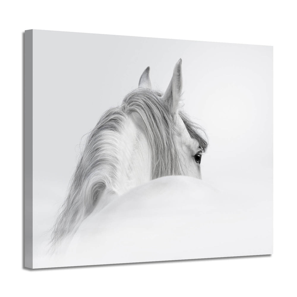 White Horse Picture Painting Artwork Print on Canvas for Wall Decoration