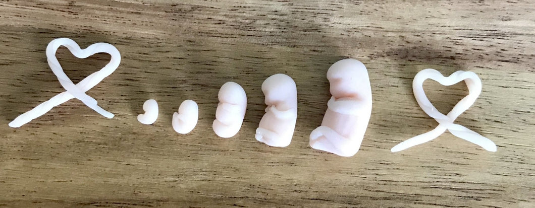 Clay babies - Today Tomorrow Always Keepsakes- -Breastmilk - Breastmilk Ring  - Ashes - Baby - Keepsake - Funeral - Wedding - Birth - Pregnancy Loss - Infant Loss - Engagement Gifts - Baby Shower Gifts - Grief - Broken Hearted