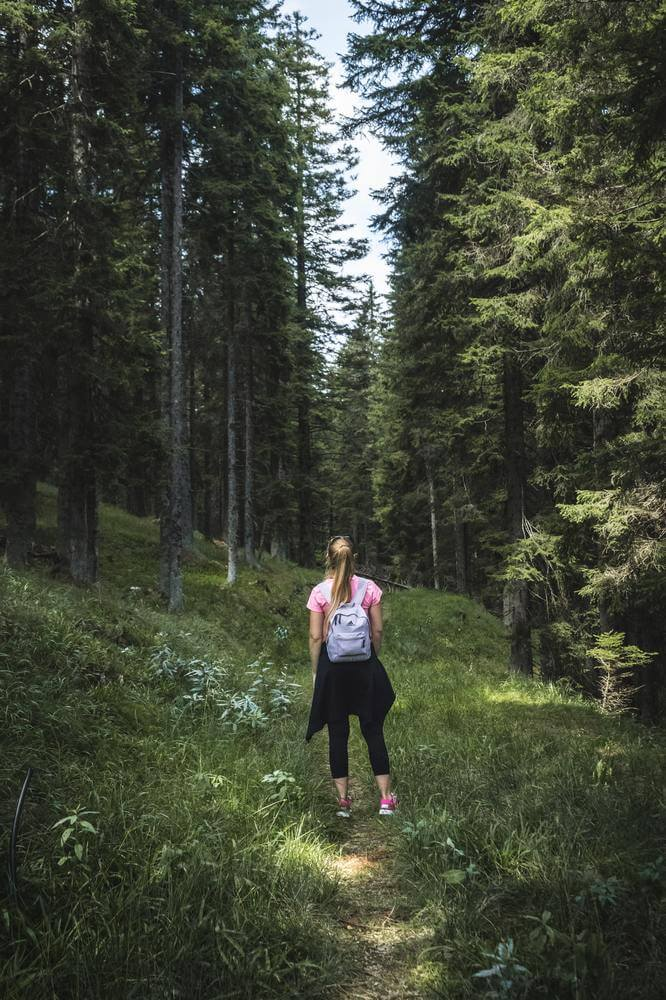 Woman with back pack standing in forest facing away